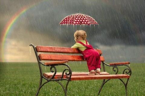 非公開: 子供が絶対に喜ぶ!子供用傘の選び方